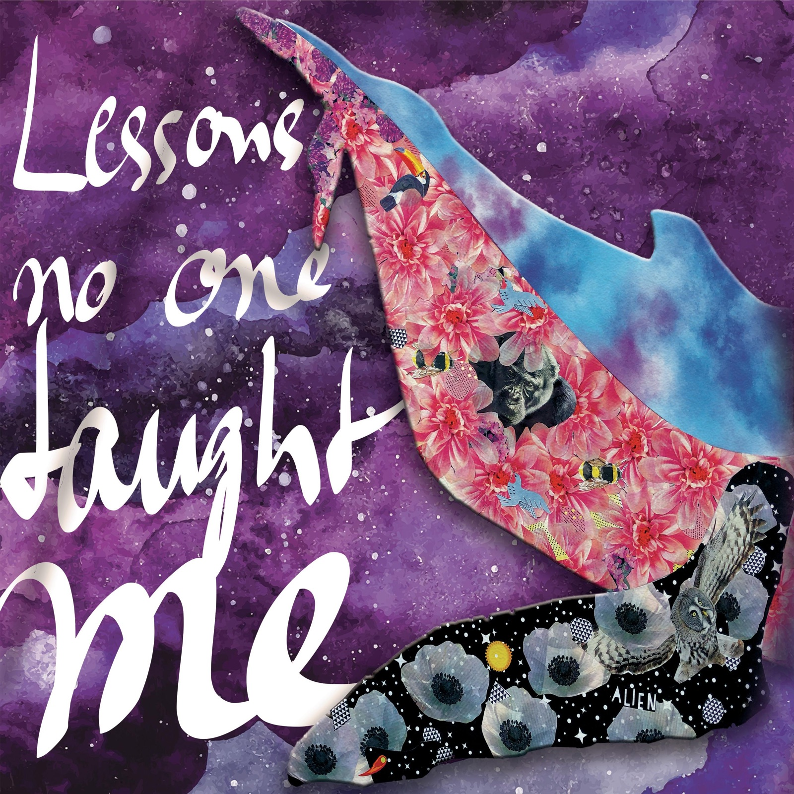 Nik Cosmo - Lessons No One Taught Me (Lessons No One Taught Me)