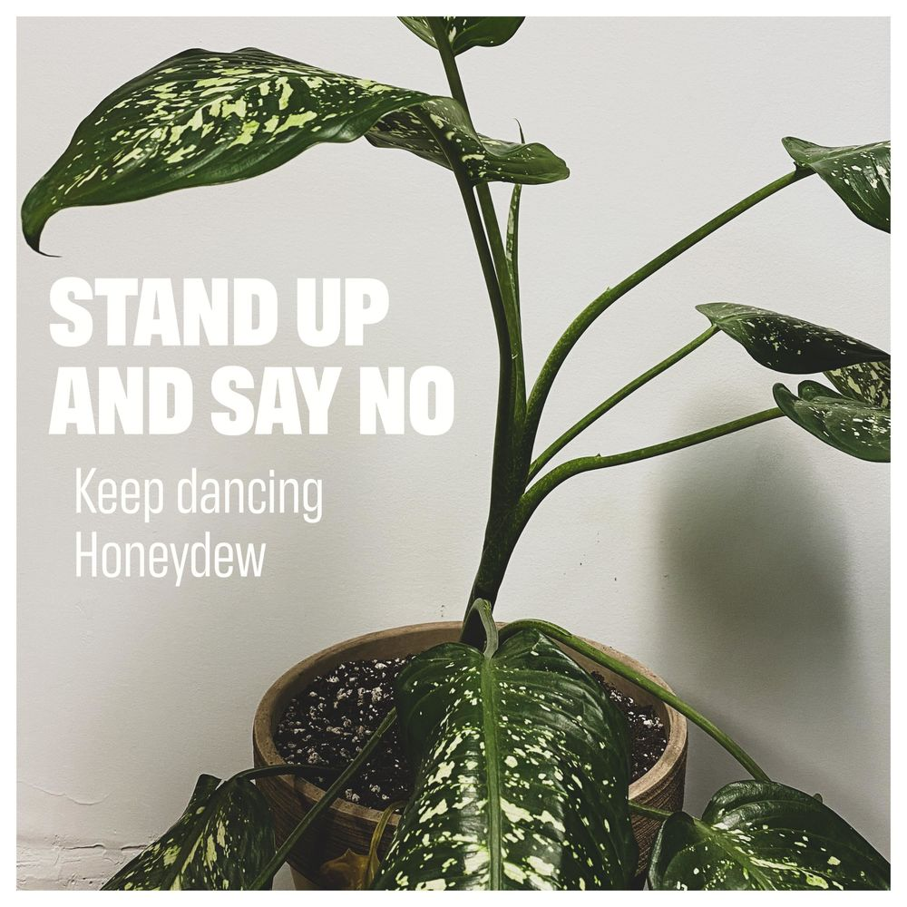 Stand up and Say No (Keep Dancing Honeydew)