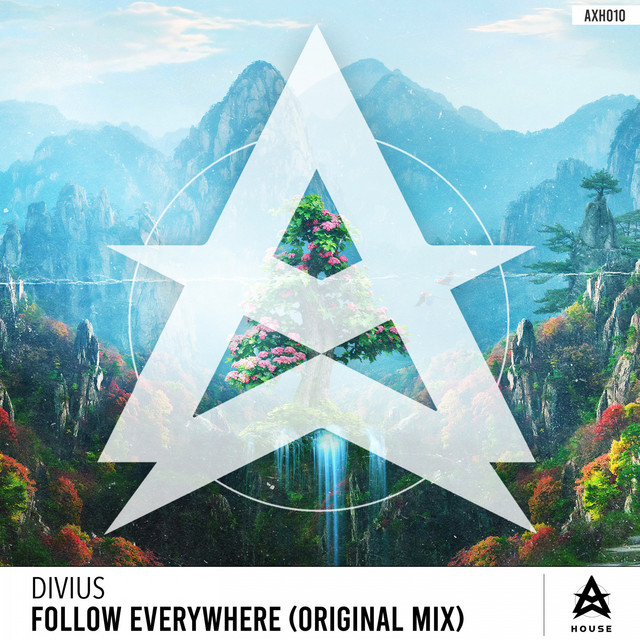 Divius - Follow Everywhere - Original Mix (Follow Everywhere)