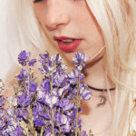 Amelle Rose